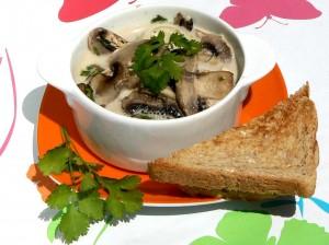 Asia-Pilze im Kokostöpfchen (29)