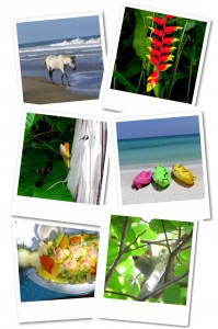 Mittelamerika Karibik Polaroids Collage1