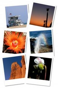 Nordamerika Polaroids Collage1