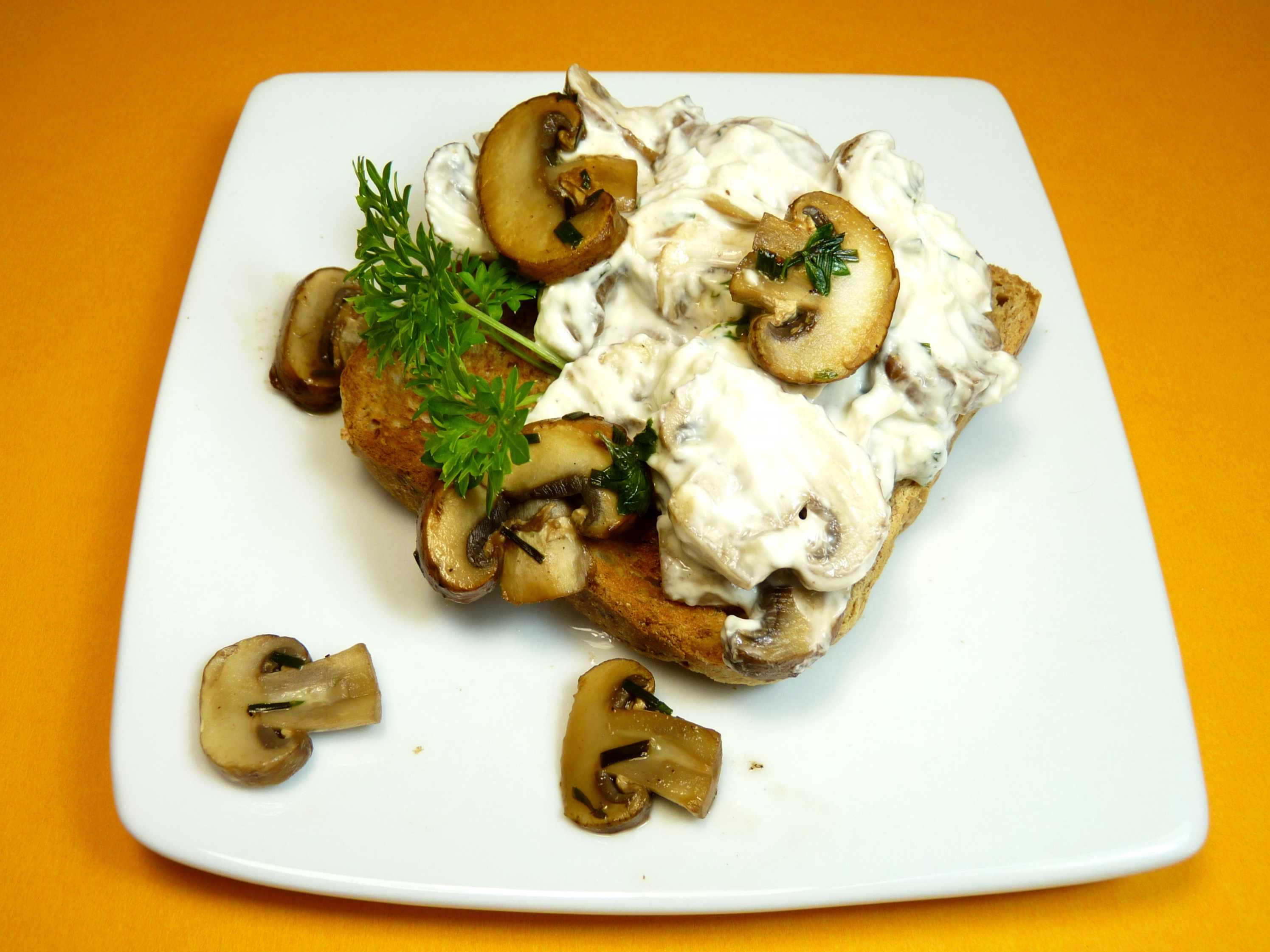 Toast mit lauwarmer Cremechampignon-Topfencreme (3)