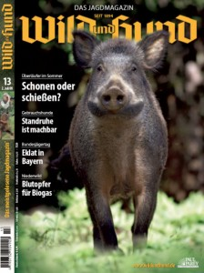 wild-und-hund-cover